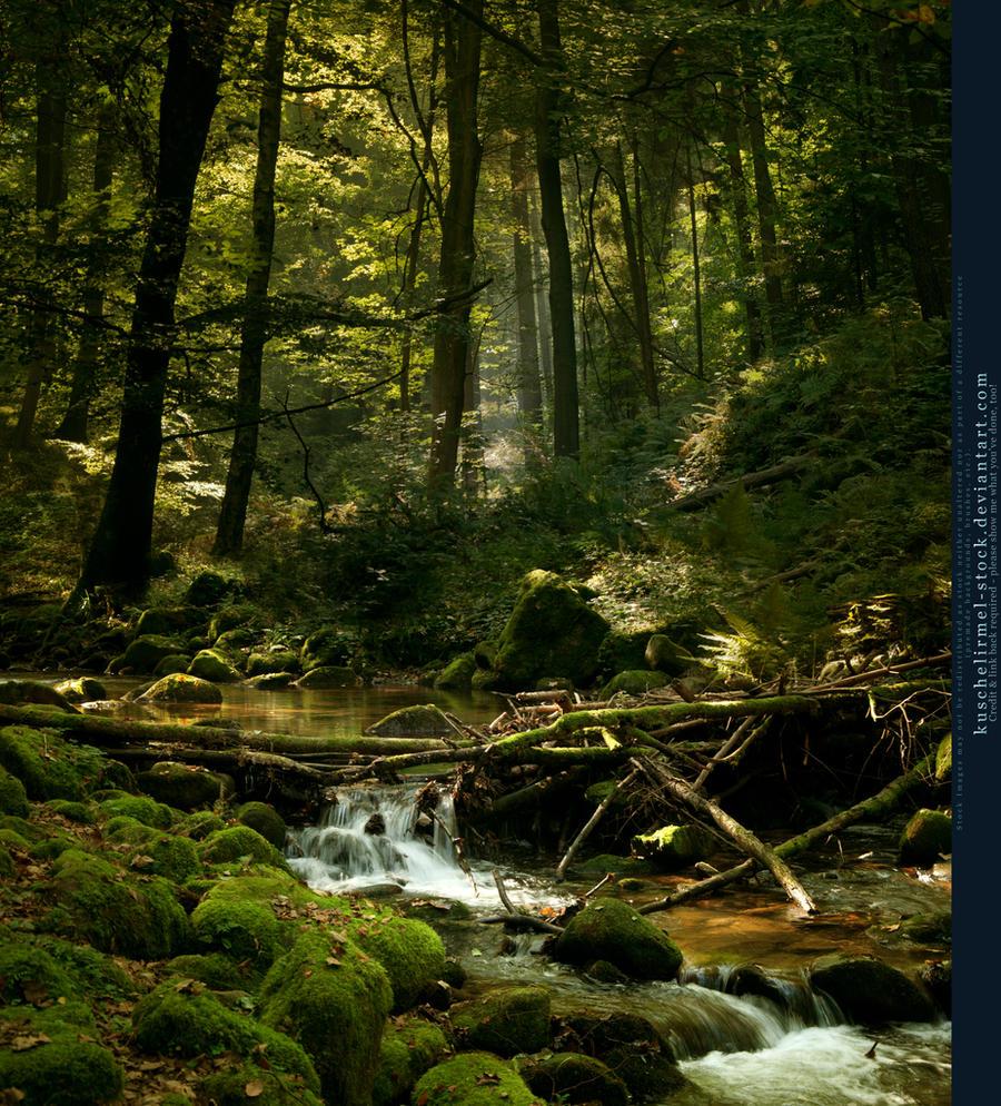 Forest River Premade By Kuschelirmel-stock On DeviantArt