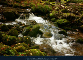 Forest River 01 by kuschelirmel-stock
