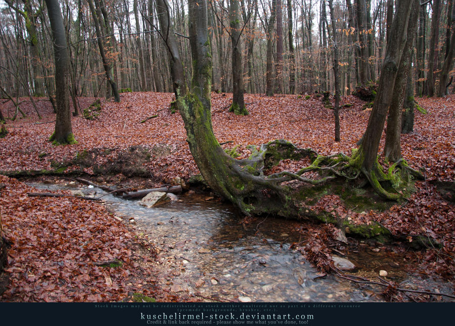 Tree Trunks Preview by kuschelirmel-stock