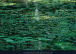 Lilly Pond III by kuschelirmel-stock