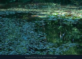 Lilly Pond I by kuschelirmel-stock