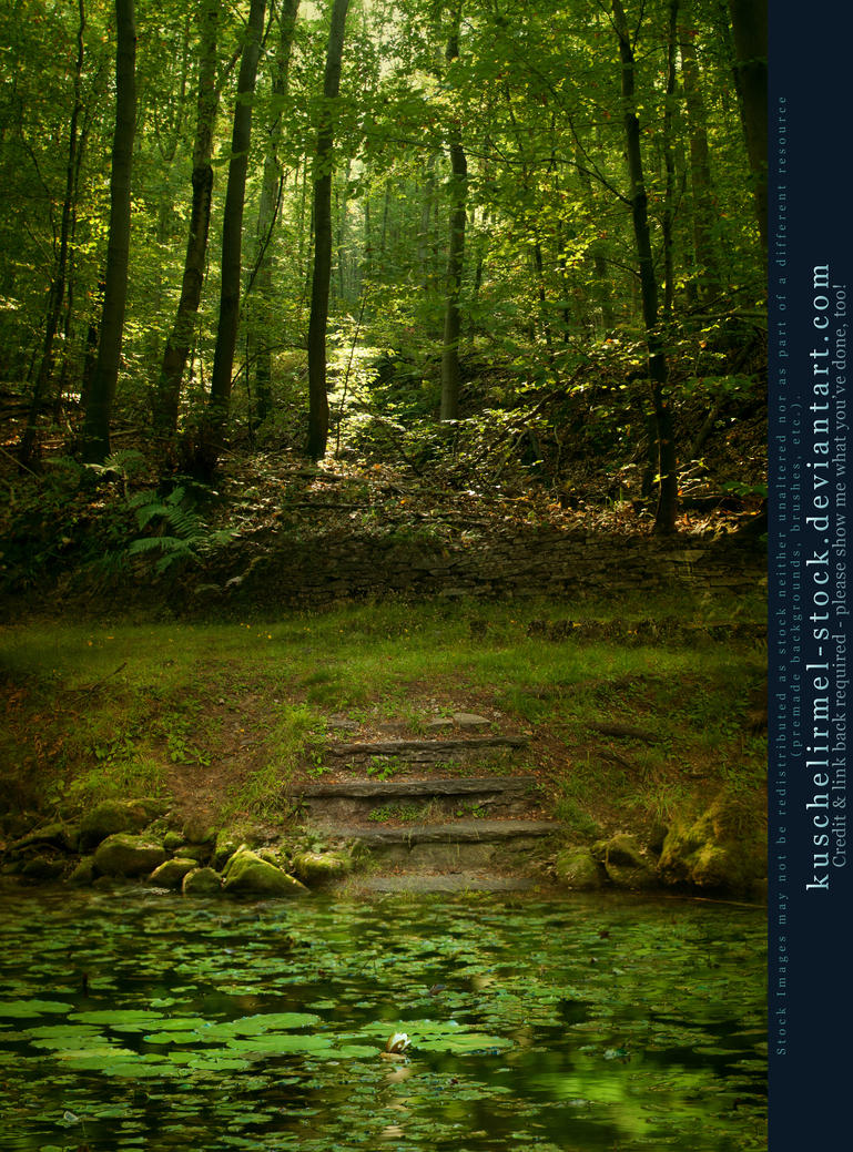 Premade Bg Pond With Stairs In The Woods By Kuschelirmel