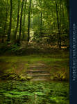 Premade BG - Pond With Stairs In The Woods
