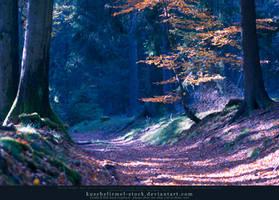 Herbstspaziergang IV by kuschelirmel-stock
