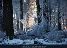 Winter is Coming (06) by kuschelirmel-stock