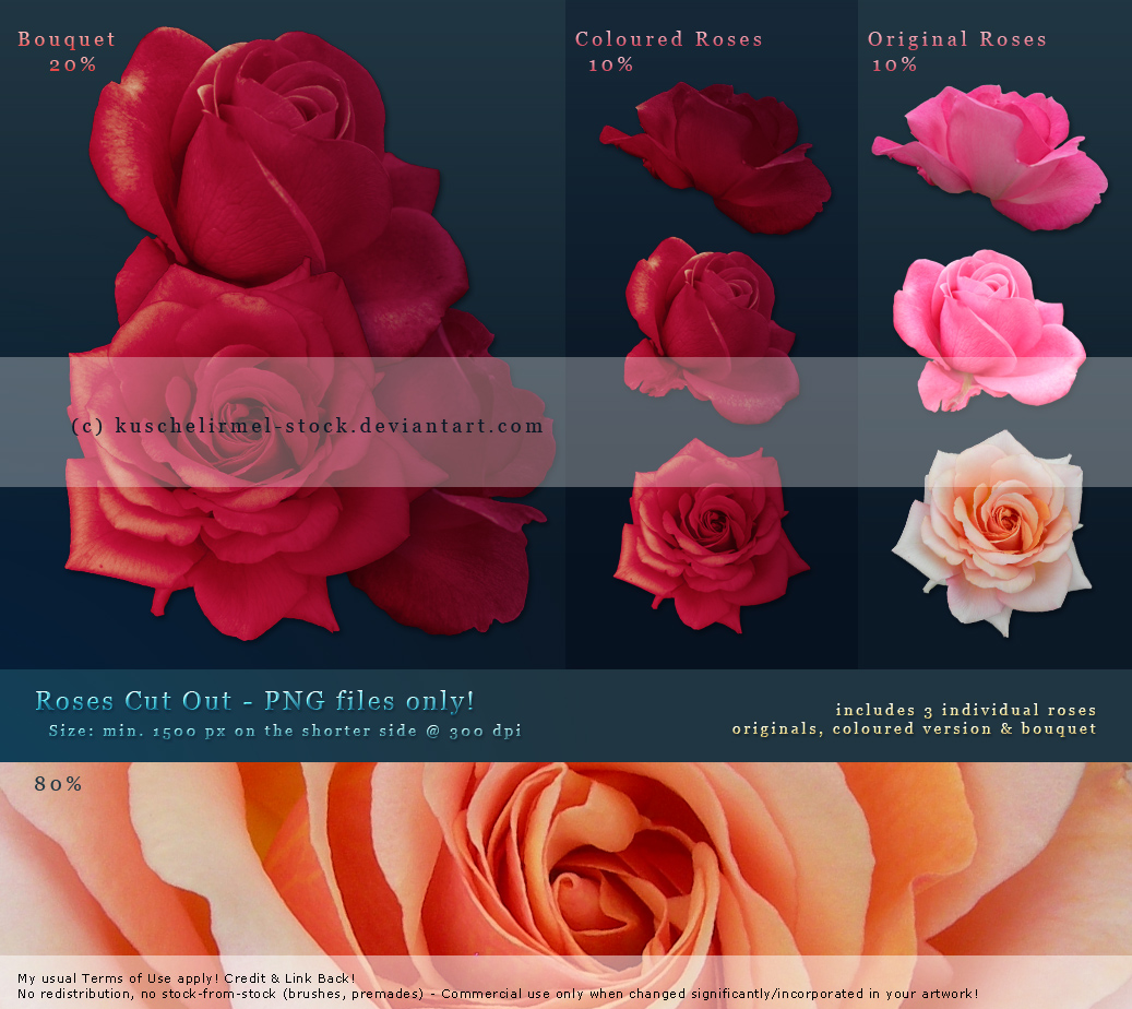 Roses Cut Out - Premium Stock by kuschelirmel-stock