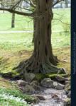 Base03 - Tree by kuschelirmel-stock
