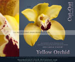 Yellow Orchid Cut Out