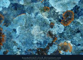 Blue Lichen Texture by kuschelirmel-stock