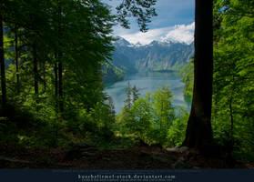 Alpine Lake - Tree - Mountains by kuschelirmel-stock