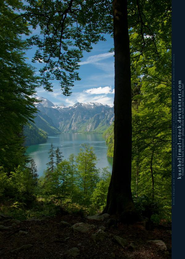 Alpine Lake - Tree - Mountains 02 by kuschelirmel-stock