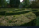 The Maze 01
