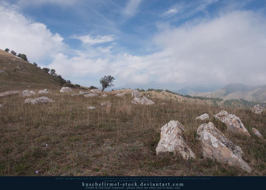 Lonely Tree by kuschelirmel-stock