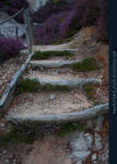 Stairs and Stones 03
