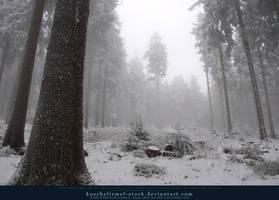 Winter Forest with Fog 11 by kuschelirmel-stock