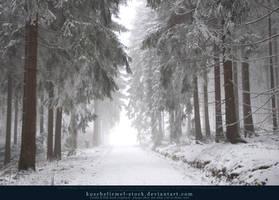 Winter Forest with Fog 07 by kuschelirmel-stock