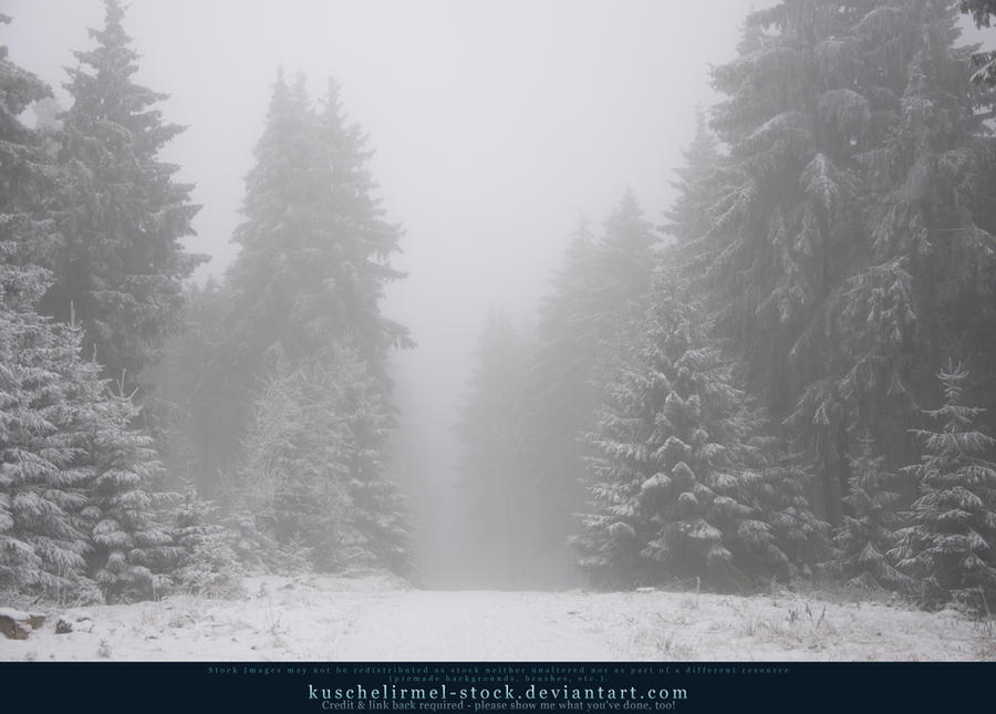 Winter Forest with Fog 05
