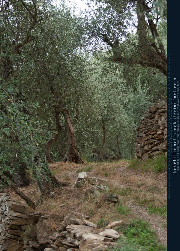 Liguria 14 by kuschelirmel-stock
