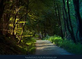 Magic Forest 04 by kuschelirmel-stock