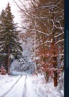 Winter Wonderland 07 by kuschelirmel-stock