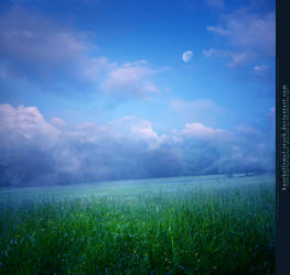 Moon over Meadow Premade by kuschelirmel-stock
