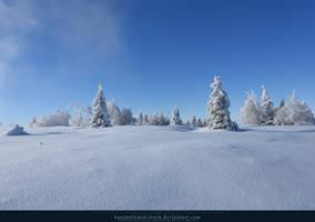 White Forest 01 by kuschelirmel-stock