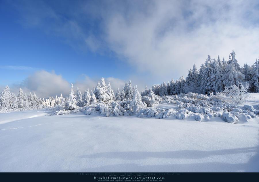 White Forest 05 by kuschelirmel-stock