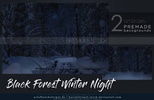 Black Forest Winter Night Premium Stock