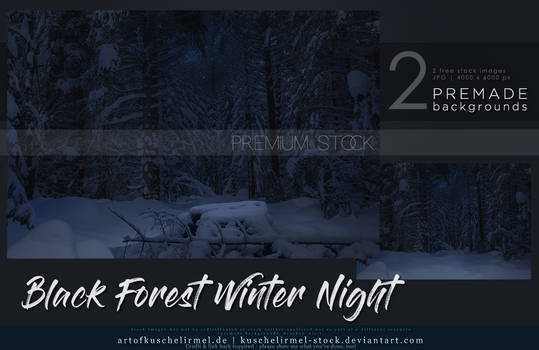 Black Forest Winter Night Cover Premium Stock