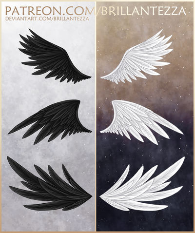 Wings for Moon Patrons