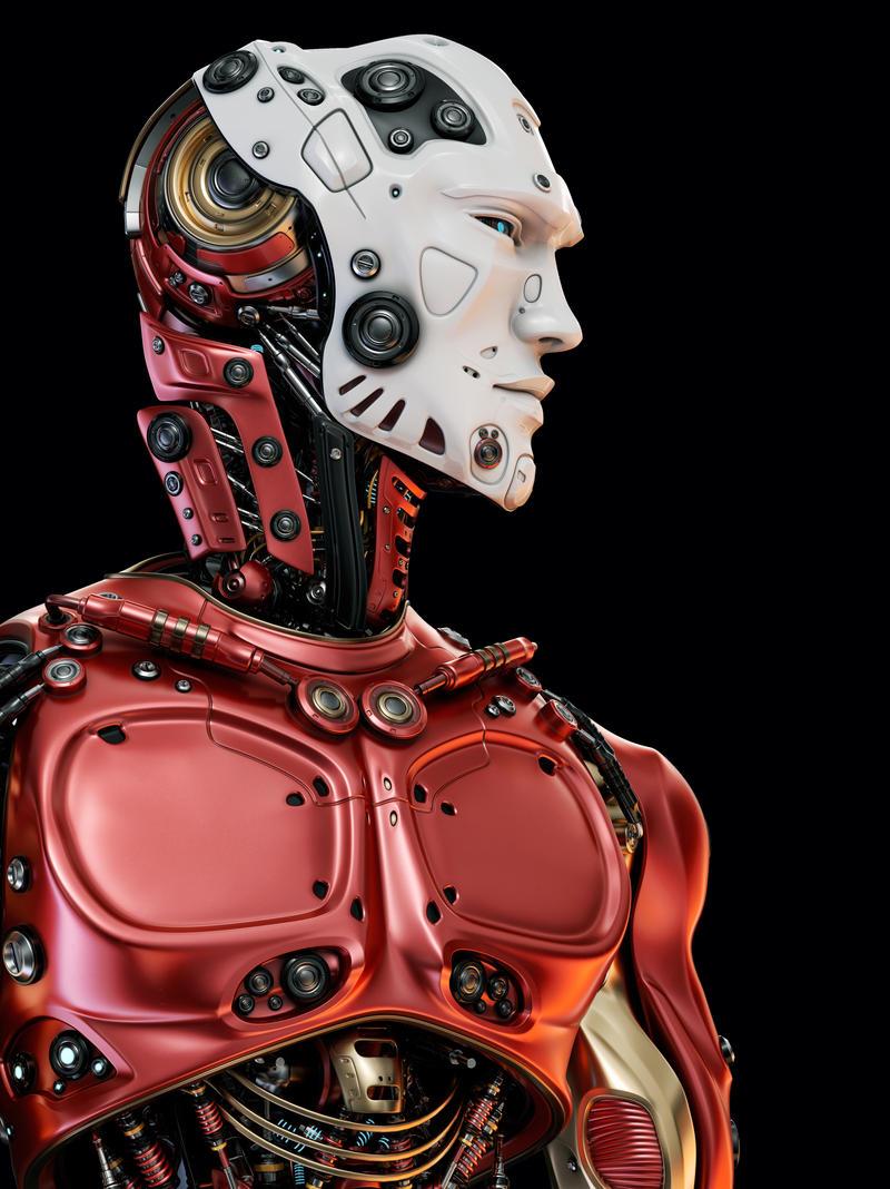 Robotic upper body