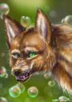 Red wolf by Stasya-Sher