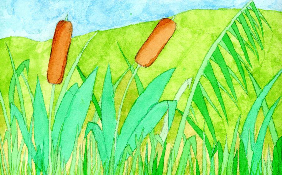 Reed in the wind by Erilia