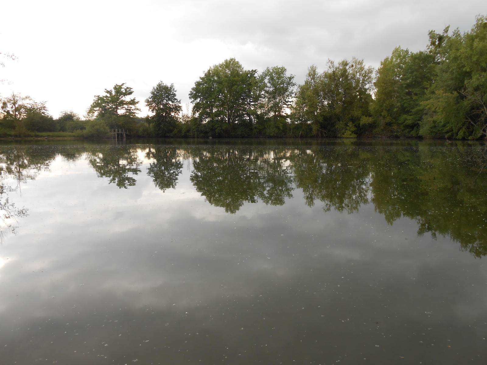 Pond at sunset 3