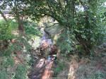 Small river stock