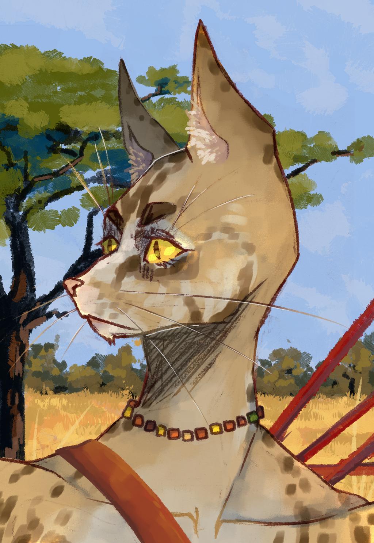 savannah_cat_by_morrya-dc8ijki.png
