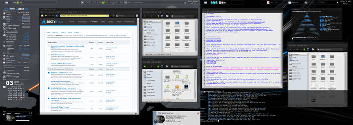 Jan 2011 Desktop Screenshot