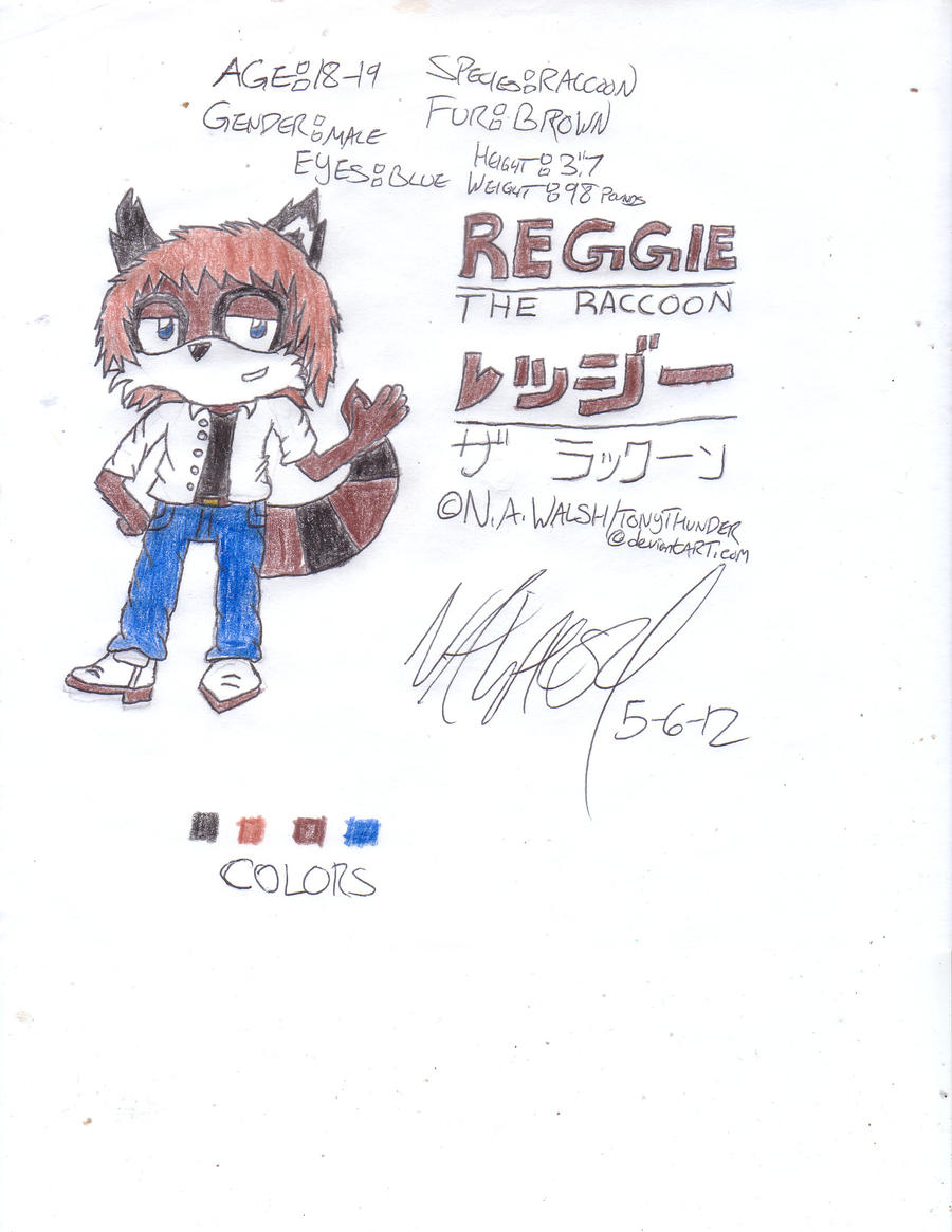 Reggie the Raccoon by Tonythunder