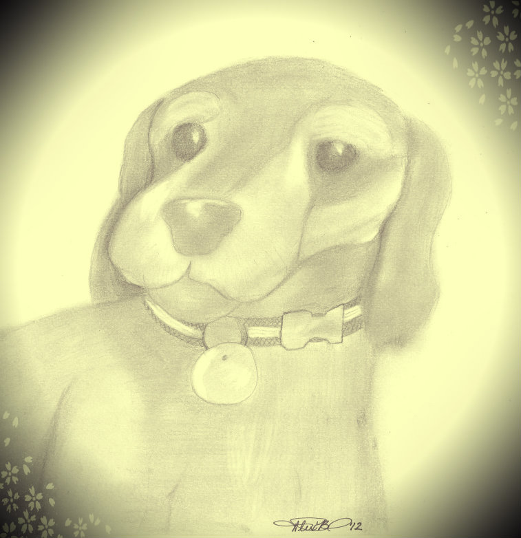 My Puppy... by Byrdman-08