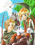 Link and Raven