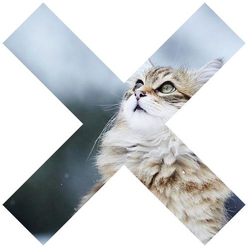 The XX Kitty Logo by Nicolajlank on DeviantArt