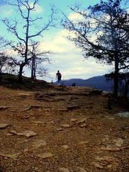 Up a Mountain