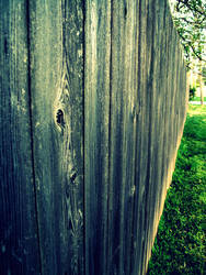 Fence by sheishere