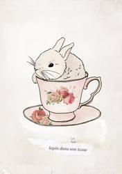 Lapin dans une tasse