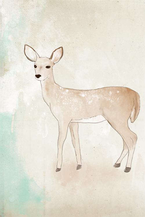 deer by tabithaemma