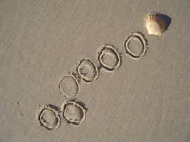 conchas y arena