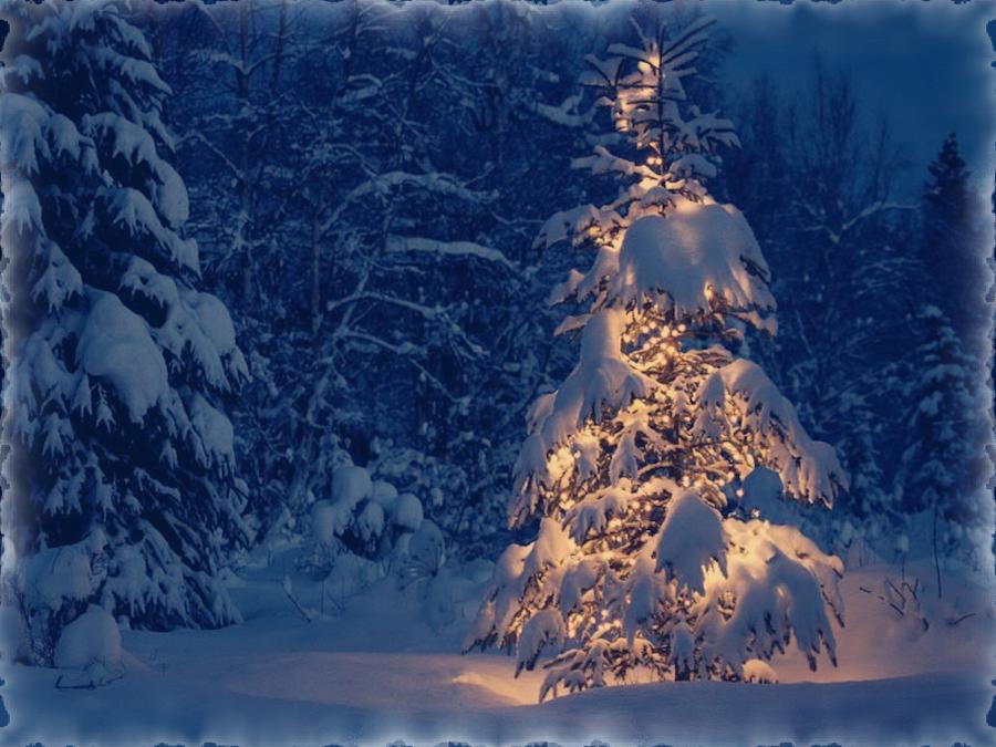 Christmas by jennyriot