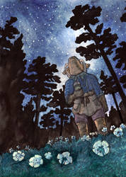 [MC] Summer Stargazing by Niverdia