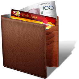 Wallet icon by Ornorm