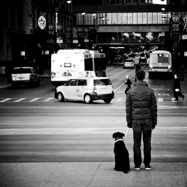 Walking The Dog by jonniedee